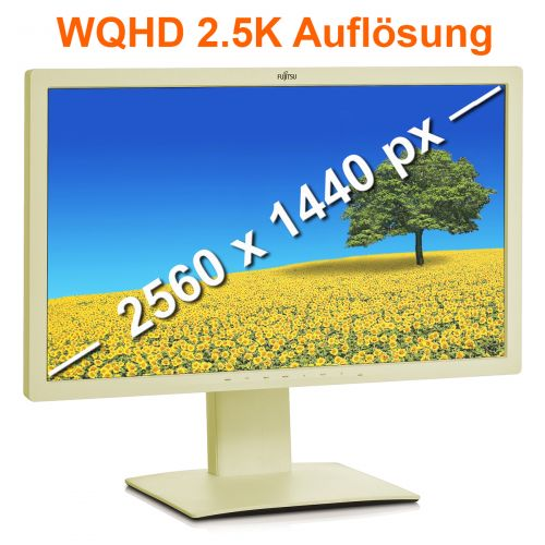 Fujitsu P27T-7 LED 27 Zoll 16:9 Monitor B-Ware vergilbt