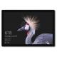 microsoft-surface-pro-4g-lte-128-gb-31-2-cm-12-3-zoll-intel-core-i5-der-siebten-generation-4-wi-fi-5-802-11ac-windows-10-4.jpg
